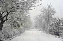 بارش برف در واپسین لحظههای زمستان