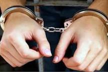 سارقان کابل های دکل مخابراتی در دزفول دستگیر شدند