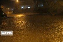 سیلاب باعث آبگرفتگی معابر شهری و خسارت به بخش کشاورزی میامی شد