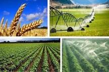 طرحهای کشاورزی گناباد بیش از 130 درصد افزایش یافت