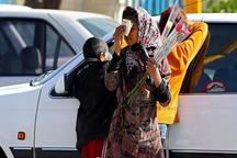 توانمندسازی 150 کودک کار در کرمانشاه 16درصد کودکان کار بی سوادند