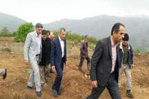 تاکیدفرماندار نوشهربر رفع موانع اجرای طرح تبدیل اراضی شیبدار به باغات