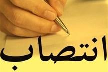 سرپرست معاونت سیاسی امنیتی استانداری البرز منصوب شد