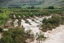 سیل افزون بر سه هزار میلیارد ریال به کشاورزی کرمان خسارت زد