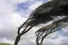 وزش باد شدید تا 80 کیلومتر مناطق مختلف استان زنجان را فرا می گیرد