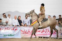 مدیران میراث فرهنگی و جهادکشاورزی جشنواره اسب ماهیدشت را برگزار کنند
