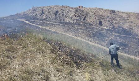 هفت هکتار از اراضی مرتعی اراک در آتش سوخت