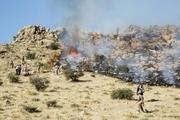 75 کیلومتر آتش بُر در شهرستان جهرم ایجاد شد