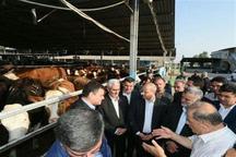 سرکشی وزیرجهاد کشاورزی ازطرح های دامی و تجهیز اراضی گلستان