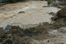 سیلاب بیش از 94 میلیارد تومان به اوشان، فشم و میگون خسارت زد