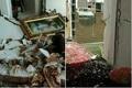 انفجار گاز در شهرستان کلیبر 9 مصدوم بر جا گذاشت