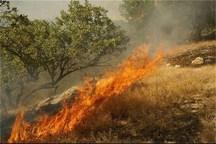 کاهش 90 درصدی آتش سوزی جنگل ها و مراتع در سلسله