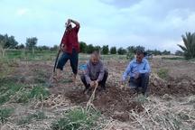 2 خبر کوتاه از شرق استان اصفهان