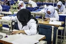 20 میلیارد تومان برای توانمندسازی زنان سرپرست خانوار اختصاص یافته است