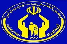 همکاری 500هزار خیر با کمیته امداد البرز