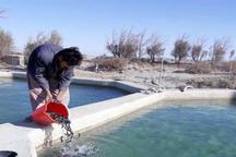 160هزار قطعه بچه ماهی سردآبی در سیستان و بلوچستان رهاسازی شد