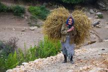 3500 زن روستایی آذربایجان غربی عضو صندوق اعتباری زنان هستند