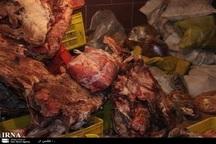 62 تن فرآورده دامی غیربهداشتی در آذربایجان شرقی معدوم شد
