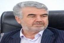 معاون استاندار: کشتار دام در کهگیلویه و بویراحمد مدیریت شود