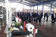 سه پروژه کشاورزی و صنعتی در ورامین افتتاح شد
