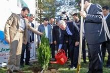 هر روز باید روز توجه به منابع طبیعی باشد  توسعه پایدار در گرو حفظ محیط زیست است