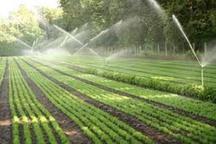 10 هزار هکتار از اراضی کشاورزی سمنان به سامانه نوین آبیاری تجهیز می شود