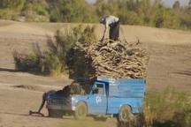 چهار تن چوب قاچاق در آران و بیدگل کشف شد