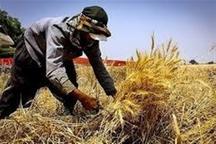 50 طرح اشتغال روستایی در خوی تصویب شد