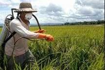 90 درصد سموم کشاورزی درخراسان شمالی بدون نسخه گیاه پزشکی خرید می شود