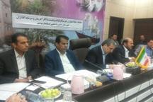 17 طرح اقتصاد مقاومتی در دشتی بوشهر برای اجرا نهایی شد