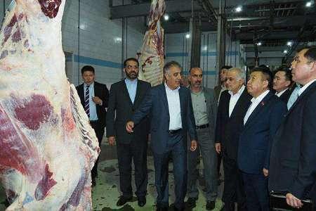 صادرات ایران به کشورهای آسیای میانه جلوه ای ازتحقق اقتصاد مقاومتی است