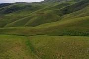 1162 هکتار از اراضی منابع طبیعی کردستان رفع تصرف شد
