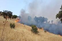 آتش سوزی در مراتع چهاردانگه کنترل شد