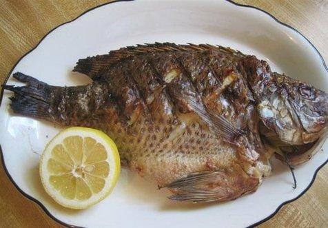 چرا مصرف این ماهی خطرناک است؟