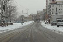 بارش برف مدارس شهرستان پاوه را تعطیل کرد