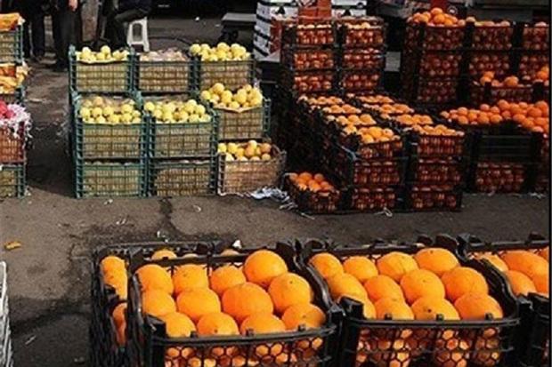 1600 تن میوه ایام نوروز در استان کرمانشاه توزیع می شود