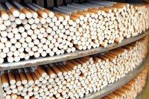 کشف 40 هزار نخ سیگار قاچاق در قاینات