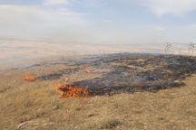 عاملان آتشسوزی منابعطبیعی در ساردوئیه به دستگاه قضا احضار شدند
