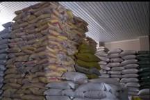15 تن برنج احتکاری در شهرستان ورامین کشف شد
