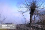کاهش آتش سوزی در اراضی منابع طبیعی آستارا