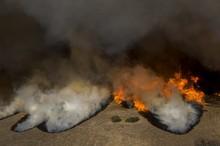 ادامه گسترده ترین آتش سوزی جنگلی تاریخ آمریکا و زخم زبان ترامپ+ تصاویر