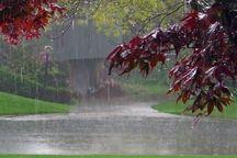 ثبت ۲۹ میلیمتر باران در نورآباد