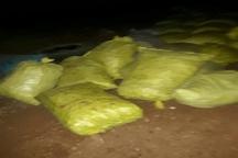 کشف وضبط یک تن پیازموسیر غیرمجاز درشهرستان پلدختر