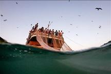 لغو مجوز فعالیت صیادی ۱۶ کشتی ترال در آبهای ایران