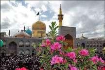 عاشقان محمد(ص) عید مبعث را در حرم ثامن الائمه(ع) جشن گرفتند