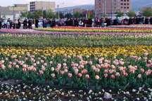 شهرداری ارومیه با کاشت 3 میلیون بوته گل به استقبال بهار می رود