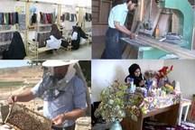 5009 شغل جدید با تسهیلات اشتغال پایدار در کردستان ایجاد شد