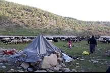 کوچ زودرس عشایر به مناطق قشلاقی خوزستان آغاز شد