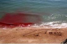 12 تیر سالروز جنایت فراموش نشدنی آمریکا در خلیج فارس شهادتگاه مسافران پرواز 655 گلباران شد