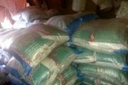کشف حدود ۵ تن برنج پاکستانی احتکار شده در کندر